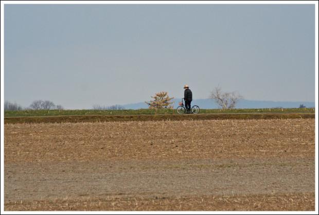 Amish life.
