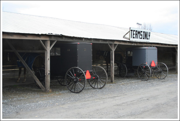 Team Parking. You know, for the Amish buggies.