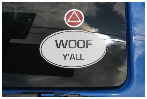Southern Dog Lover