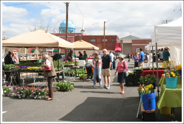 Warrenton Farmer's Market