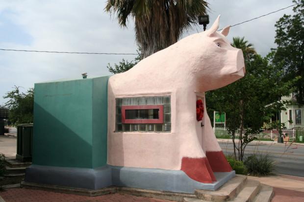 Big Pig in Profile