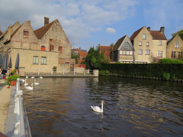 Bruges 332
