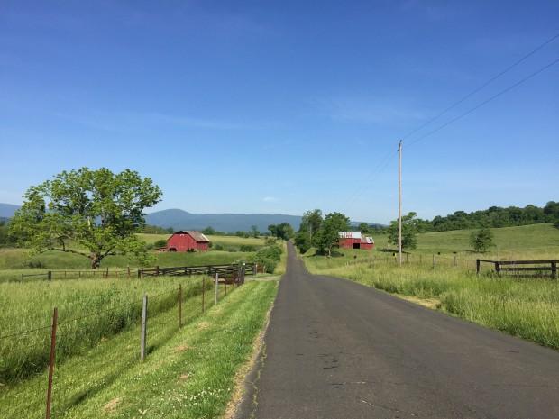 Hume Road