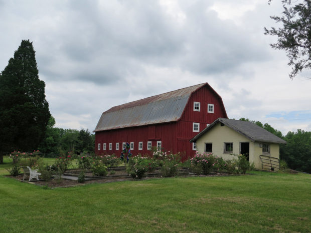 7_Barn_and_Cottage_IMG_0228