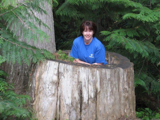 Me in Big Tree Stump