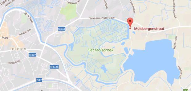molsbroek